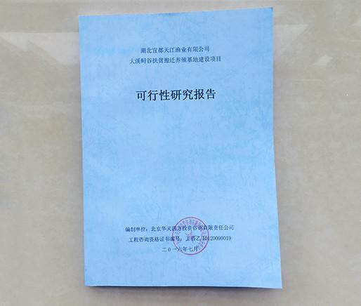 宜昌可行性研究报告